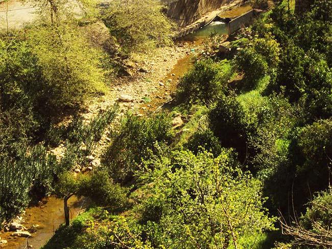 Gorge of Arkadi